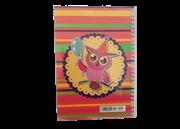 دفتر نقاشی جلد مقوایی سیمی 80 برگ+