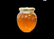 عسل 500 گرمی گون+