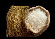 برنج کامفیروزی یک کیلوگرمی+